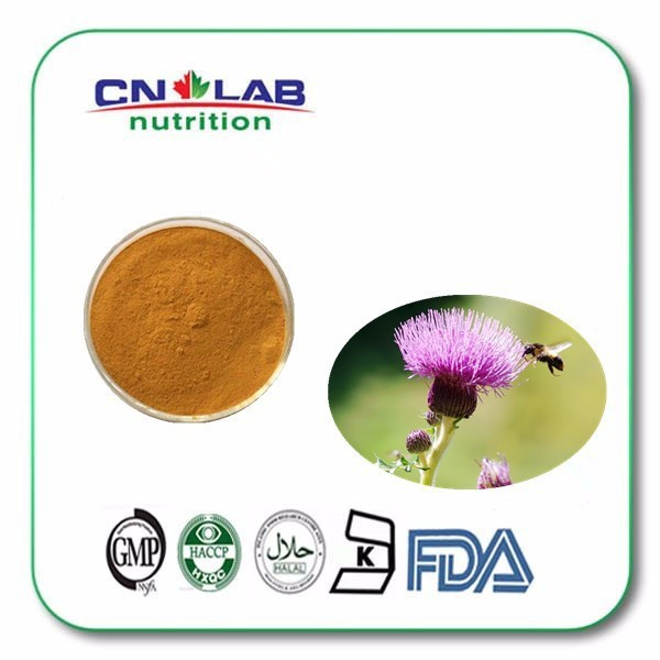 GMP/HPLC as raw material for food and beverage milk thistle P.E. Powder