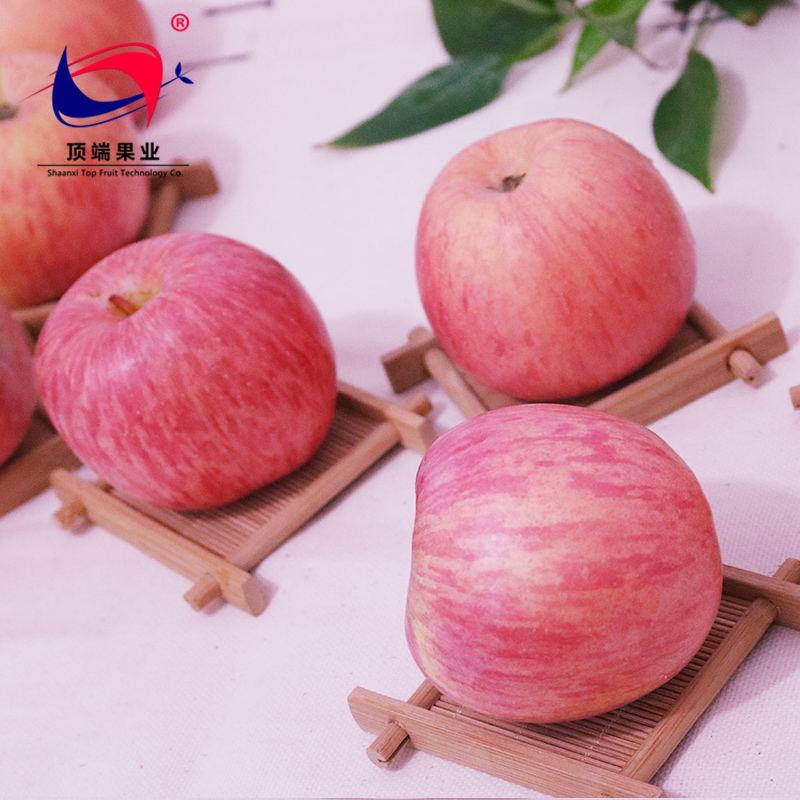 Delicious Luochuan Fuji apples for fresh fruit importers from the worldwide