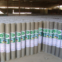 15bls 2 layers Waterproofing Paper Asphalt Roof Felt