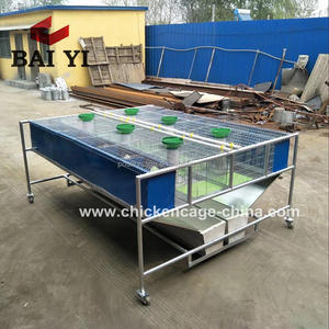Automatic Galvanized 3 Layer Rabbit Cages with Feeding and Drinking System