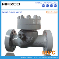 Wholesale factory price carbon or stainless steel adjustable check valve