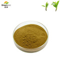 Greenland 100% Natural Chinese Traditional Green tea extract powder