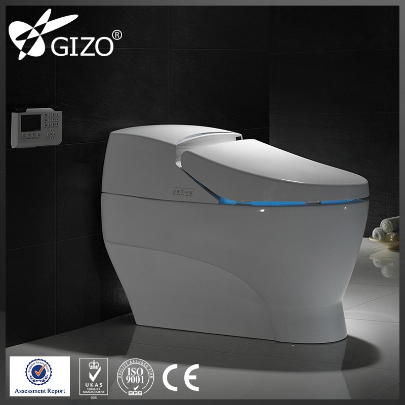 Kohler New Style Intelligent Sanitary Ware/New Arrivals Toilet