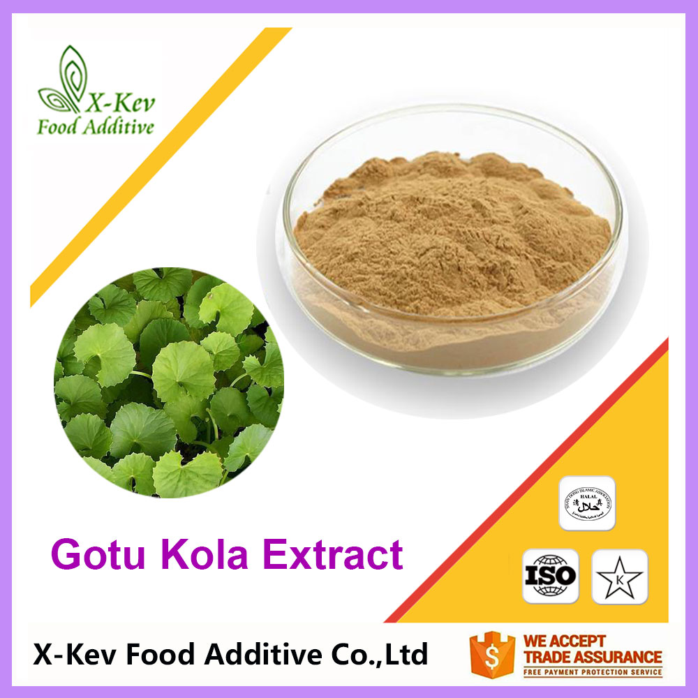 natural gotu kola centella asiatica extract powder 90% asiaticoside