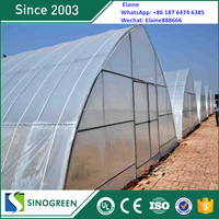 SinoGreen long life high tunnel greenhouse plastic film