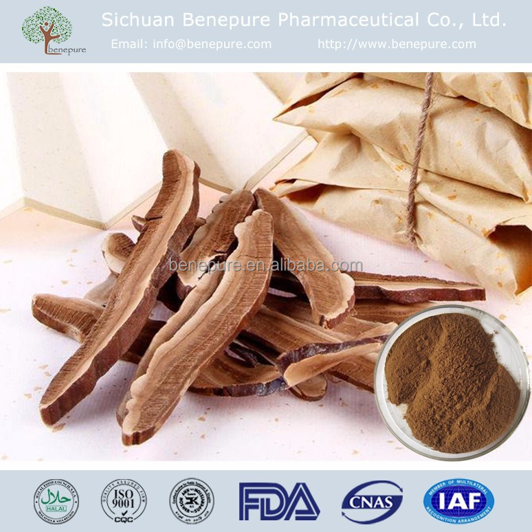 GMP factory supply Lucid ganoderma P.E. Reishi Polysaccharides powder