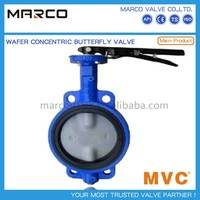 End Connection Type Lug and Wafer Butterfly Valve