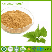 Cheap Price Yellow Brown Fine Powder Nettle Leaf Extract in Herbal