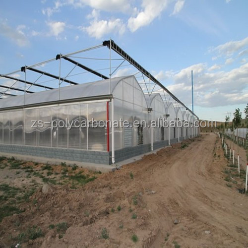 Twin wall polycarbonate roofing sheet for green houses