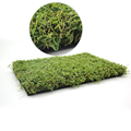 High Quality Grass Artificial for Garden and Playground