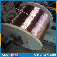 copper coated iron wire with electrical conductivity