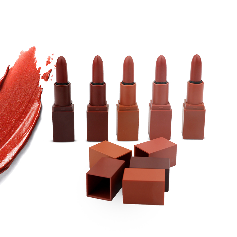Hot Selling OEM No Brand 5 in <strong>1</strong> Matte Lipstick Set