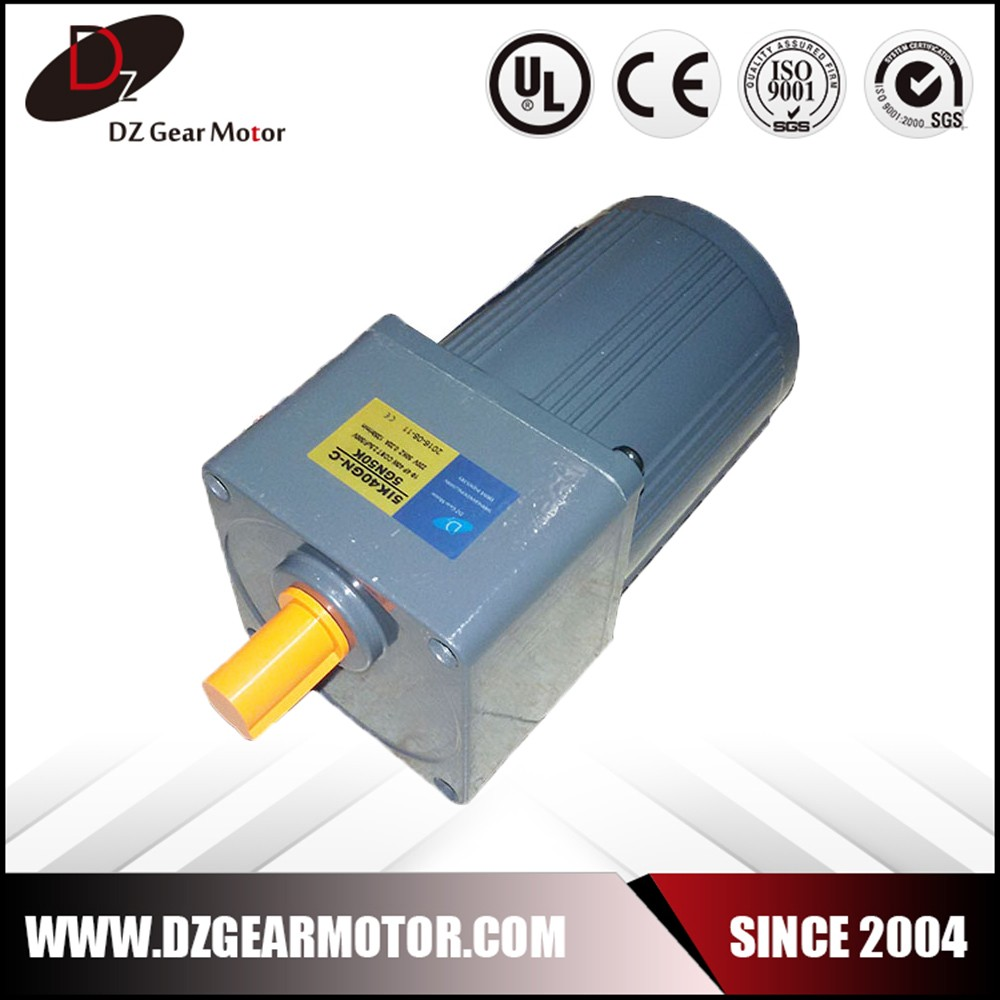 Single Phase Asynchronous Ac Gear Motor With Speed Reducer