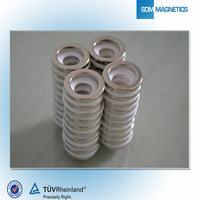 Manufacturing High Quality Customized Strong Ring Neodymium Magnets