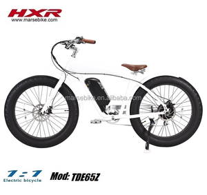 Halley 26 inch tire 750W snow beach electric fat bike