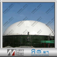 High Quality Steel Digester Tank for Biogas Plant