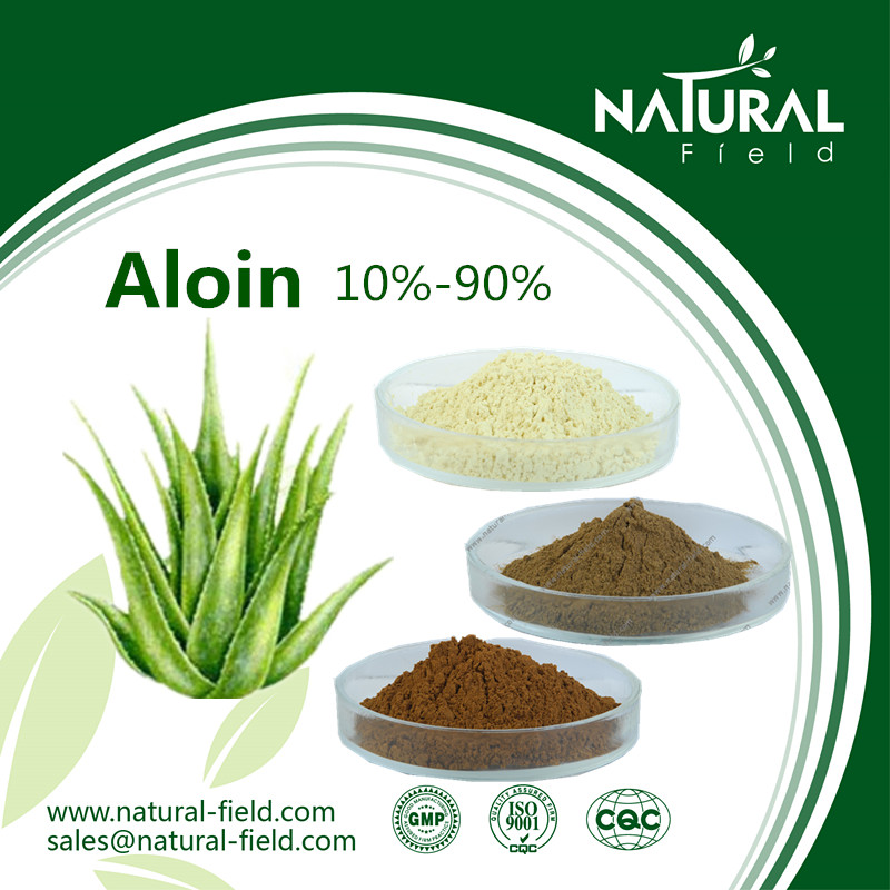 Herbal plant extract aloe vera powdered extract barbaloin