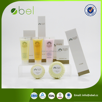 Special design hotel person room amenities set