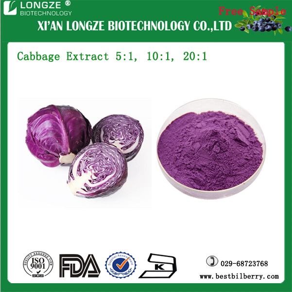 Spray dried Purple Cabbage Extract Brassica oleracea L.var.capitata L. Powder Factory/Supplier/Distributor/ Manufacturer