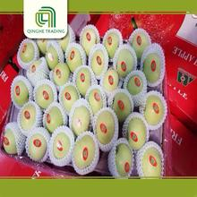 wholesale types of green apples for sale