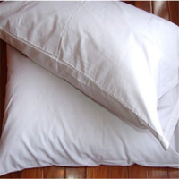 feather pillow with pillow travel