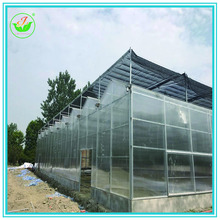 Factory wholesale Supplier Pc Sheet Venlo greenhouse parts Used For Vegetable planting