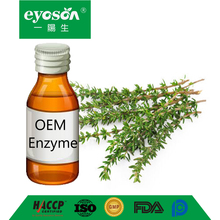 OEM English Thyme Enzyme herb extract Herbal Insect Itch Bites Pain Relief Massage liquid extract
