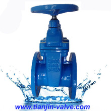 Wedge gate valve,rising stem flanged gate valve with prices