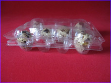 Wholesale transparent plastic quail eggs packs
