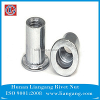 China Fasteners flat head round body with knurled rivet nut