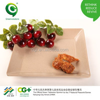 new design biodegradable Round Plate size(L)