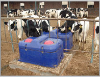 Plastic Cattle Drinking troughs/animal drinking trough