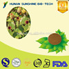 in bulk Acmella oleracea Extract Powder/ spilanthol for Antimicrobial