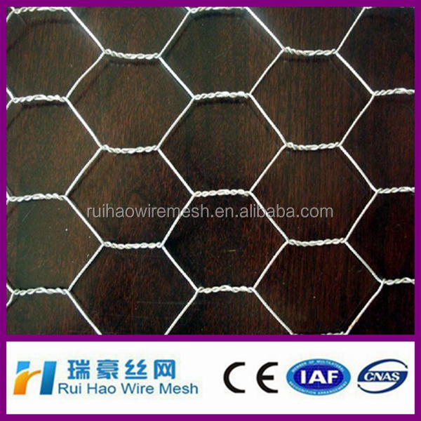 chicken wire mesh / hexagonal wire netting