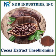 Cacao Extract Powder Theobromine from Theobroma Cacao Seeds