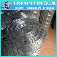 Anping Factory Prices 2x2 galvanized welded wire mesh for fence panel