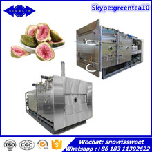 Food Processing Machinery/Lyophilizer Price/Dehydrator/Fruit and Vegetable Freeze dryer