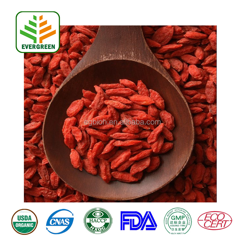 Private label organic Goji berry extract/ Bulk Goji fruit powder/ Dried Goji Berry