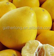 Trade Assurance Supplier Red Meat Honey Pomelo Fruit