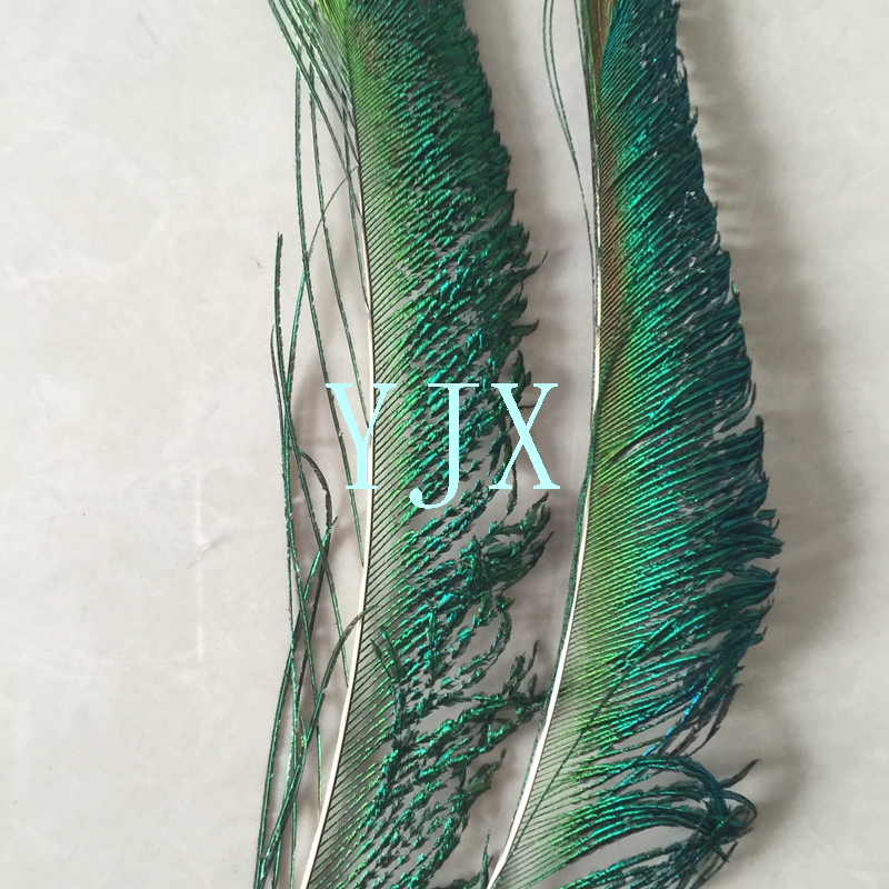 chinese supplier cheap natural artificial peacock Feathers for carnival costumes