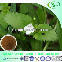 Scrophulariaceae Glycosides figwort root extract