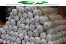 2017 New crop fresh Chinese normal wholesale white garlic