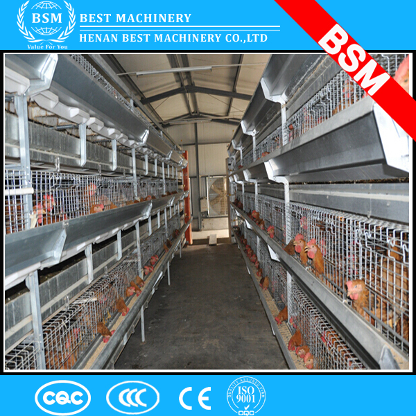 Customized 3-4 layers layer chicken battery cage/used poultry battery cages for sale/poultry equipment