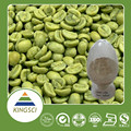 cGMP Manufacturer Supply Food Grade 100% Natural Bulk Powder Green Coffee Bean Extract KS-29