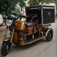 hot sale adult 3 wheels electric tricycle bike with enclosed cabin box