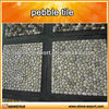 /product-detail/white-pebble-garden-pictures-1190254938.html