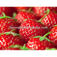 Wholesale Strawberry Bush Seed Store And Strawberry Plugs Growing