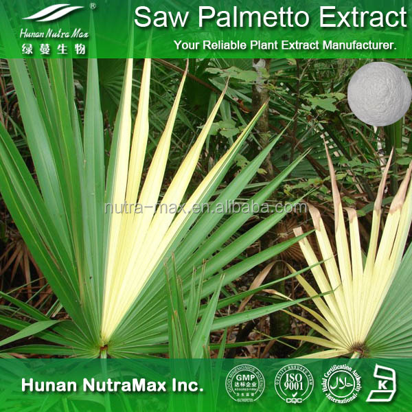 2016 Natural Saw Palmetto Extract Powder/Saw Palmetto PE. with 90% Fatty Acids Free Sample