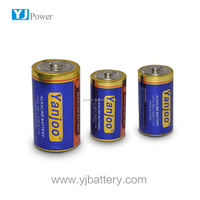 alkaline battery LR14 c 1.5VZn/MnO2 battery with battery pack for torch light