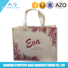 Full Color Print Promotional Non Woven Shopping Bag